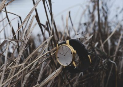 Hirwill Watches